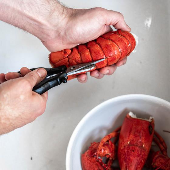 Coffret crustacés